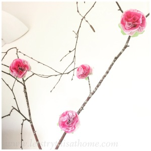 Pink paper flowers